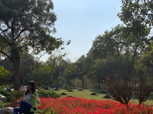 City Season - The Linum Rockery, Nehru Park