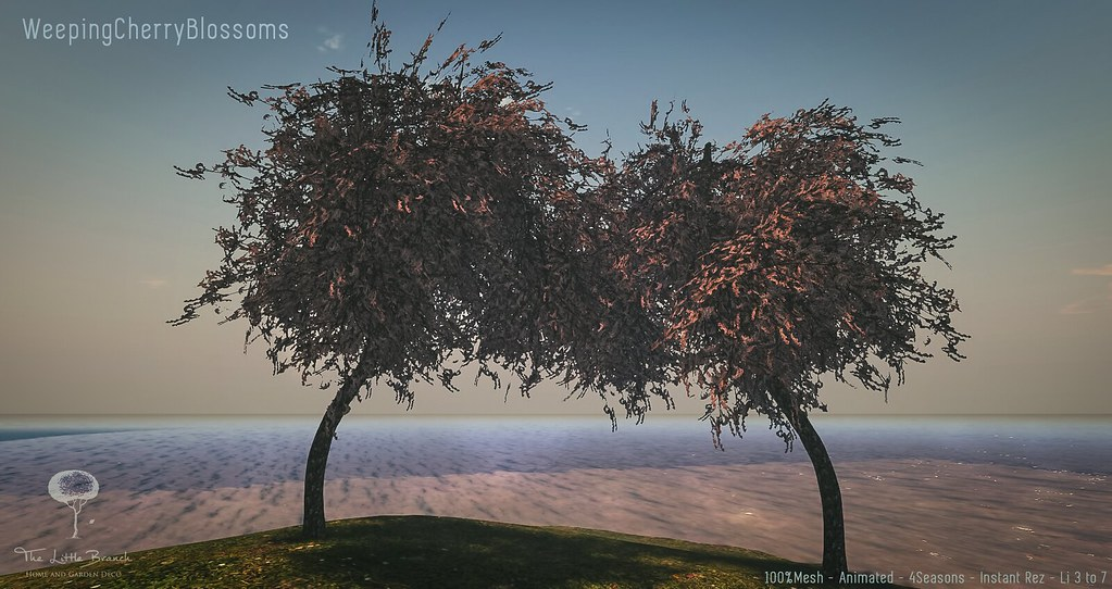 """Weeping Cherry Blossoms"" by the Little Branch –  MadPea Premium Alliance Hunt: The Golden Pea Awards!"