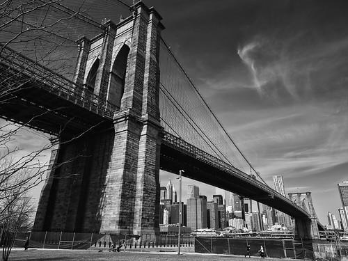 New York City (14)