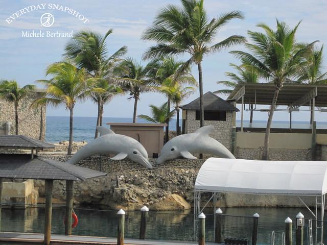 Amber Cove, Dominican Republic (13)