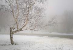 hiver 18-19