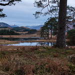 A Scottish Landscape Iain Houston by Iain Houston