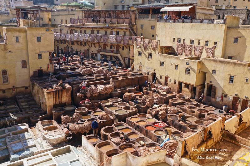Morocco Fes Chouara Tannery 1