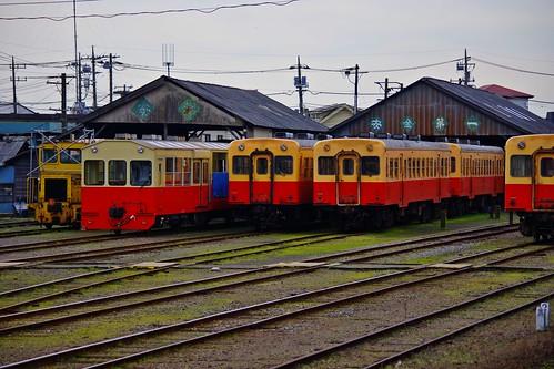 IMGP1129