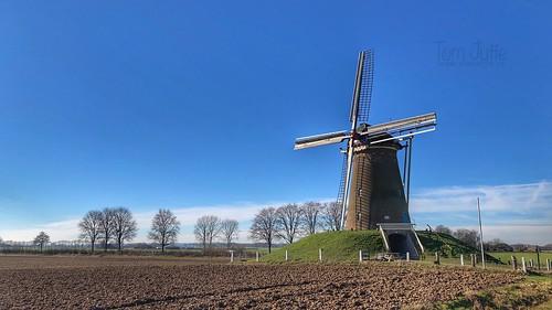 Bronkhorstermolen, Steenderen, Gelderland, Netherlands - 2306