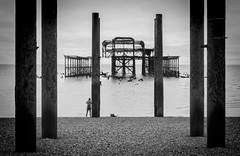 Image by NoVice87 (92110231@N03) and image name Low Tide photo  about The derelict West pier at Brighton at low tide.