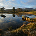 Late afternoon, Kelly Hall Tarn. by trev.eales