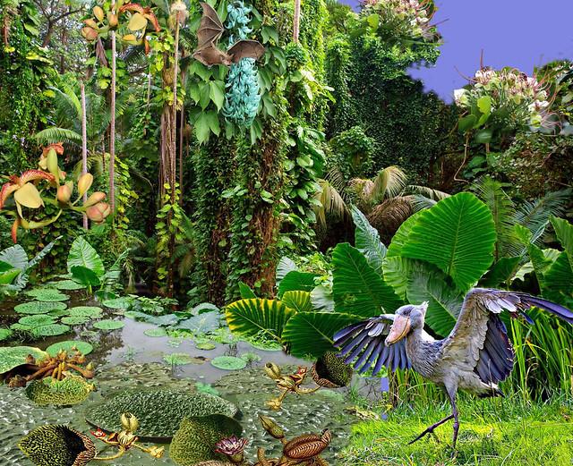 лес и болото 2