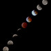 Composite of the January 20 2019 lunar eclipse from Tucson, Arizona by Distraction Limited