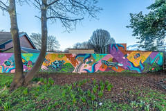 STREET ART IN HERBERT PARK IN BALLSBRIDGE [NEAR THE TEAROOMS]-148491
