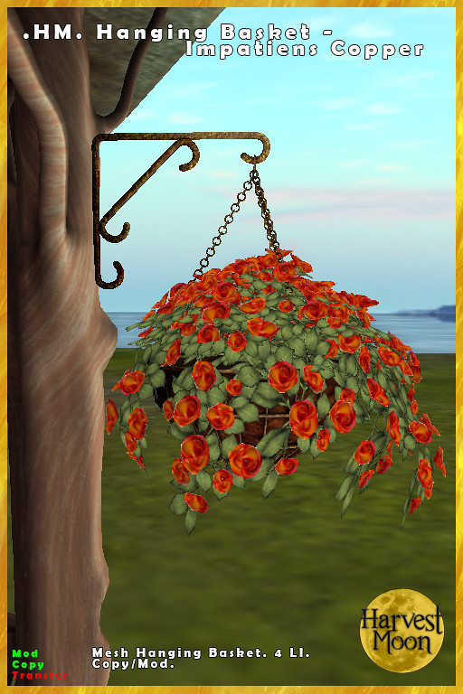Harvest Moon – Hanging Basket – Impatiens Copper