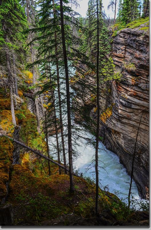 Athabasca Falls  (11)