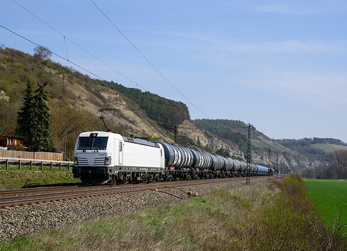 193 247 ELL-ECCO Rail