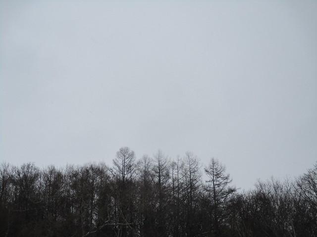 IMG_0660