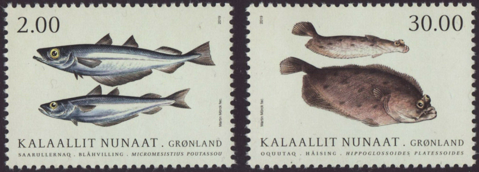 Greenland - Fish in Greenlandic Waters, Part II: Blue Whiting, American Plaice (January 21, 2019)