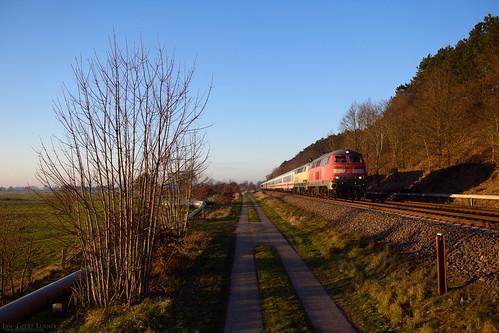 DE - Gudendorf - 218 307&480