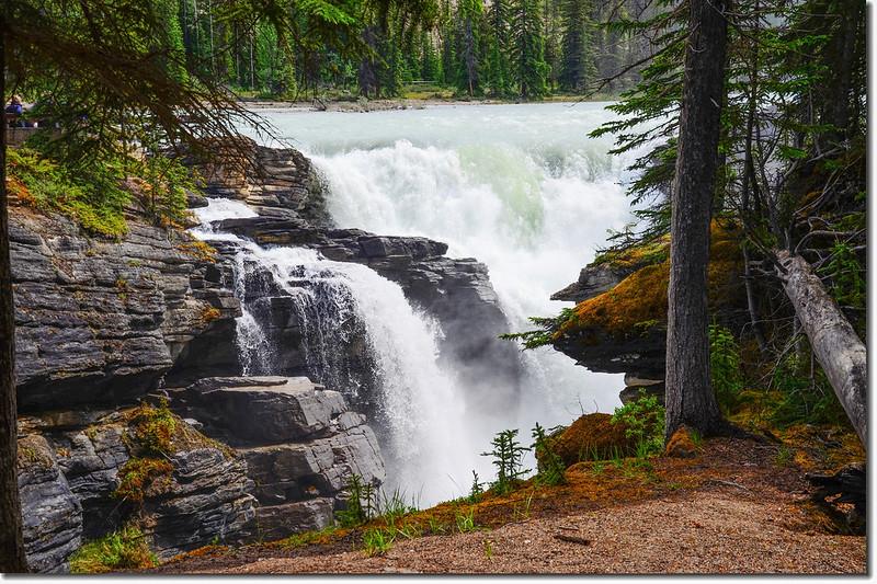 Athabasca Falls  (15)