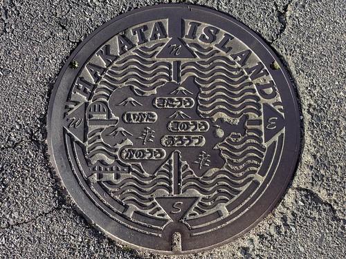 Hakata Ehime, manhole cover (愛媛県伯方町のマンホール)