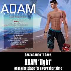 ADAM light 24h