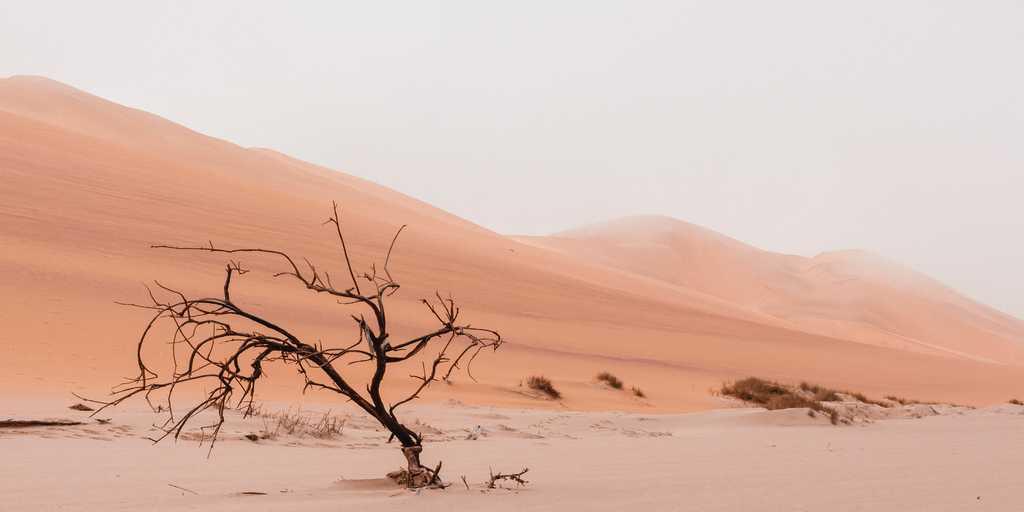 Les objectifs contre le changement climatique ne seront pas atteints