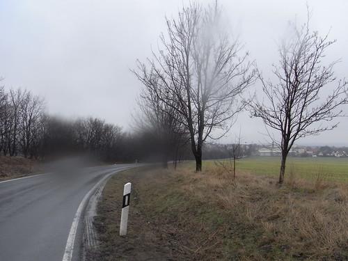 20100317 0204 199 Jakobus Regen Straße Bäume Ortschaft