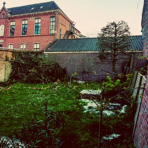 104_14-04-2019_Farewell good old garden