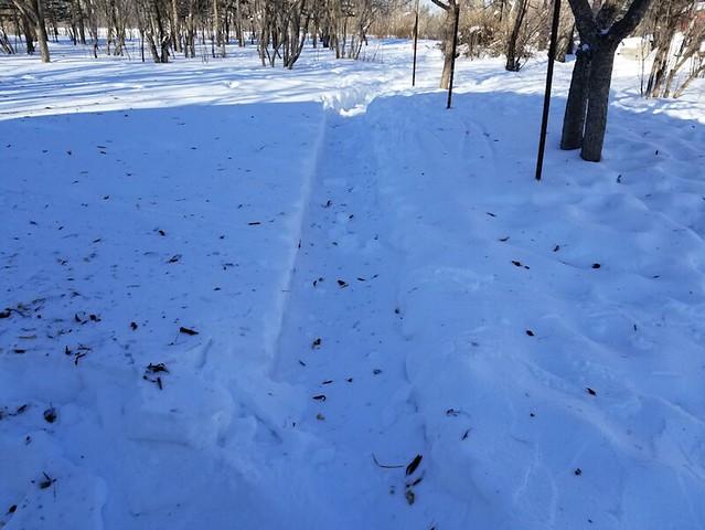 20190222.snowpath.8