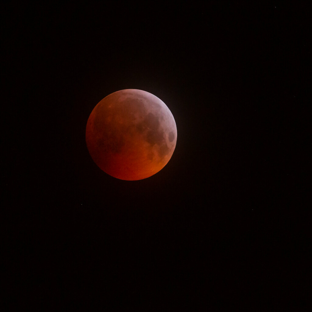 blood moon 2019 east coast - photo #15