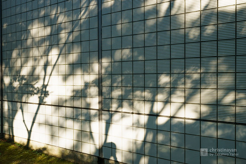 Shadow of Akita City Central Library Meitokukan (秋田市立中央図書館明徳館)