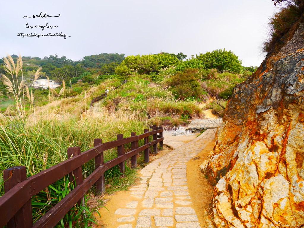 台北陽明山一日遊景點推薦硫磺谷龍鳳谷公園免費泡湯溫泉泡腳池 (8)