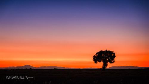 Sundown in Brihuega