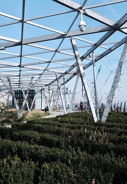 The Garden at 120