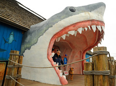 Sharks mouth, Billy, his mom Dorthe, Rosie, pier posts and rope, trip, Ocean Shores, Washington, USA