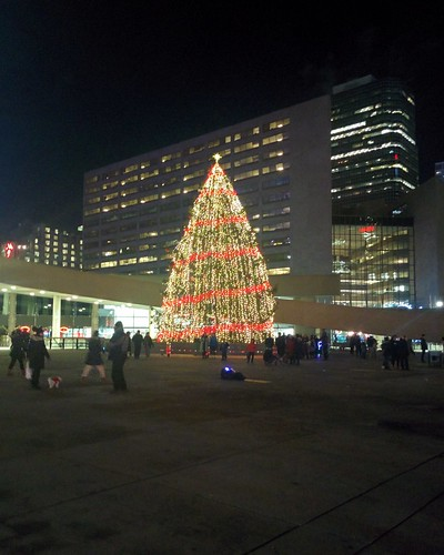 Christmas tree (4) #toronto #torontocityhall #nathanphilipssquare #night #christmas #christmaseve #christmastree #latergram