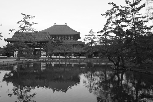 25-02-2019 Nara on morning (37)