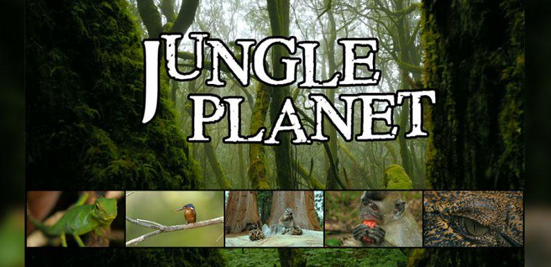 Jungle-Planet-