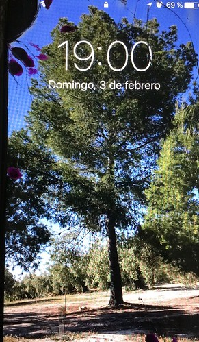iPhone 7. Pantalla rota.