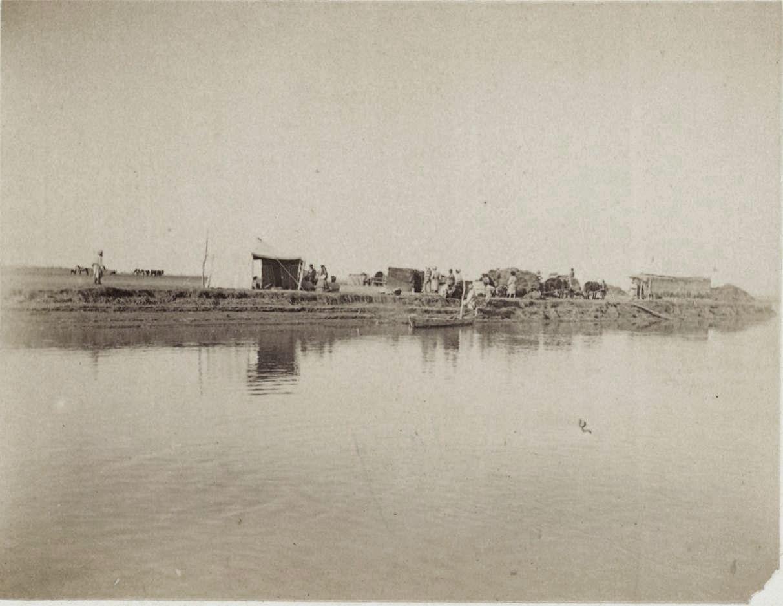 11. Амударья. Остров на реке