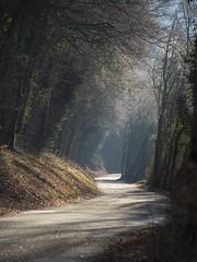 Route de campagne **---+°---°