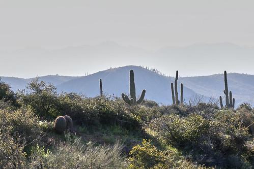 landscape landscaoes nature