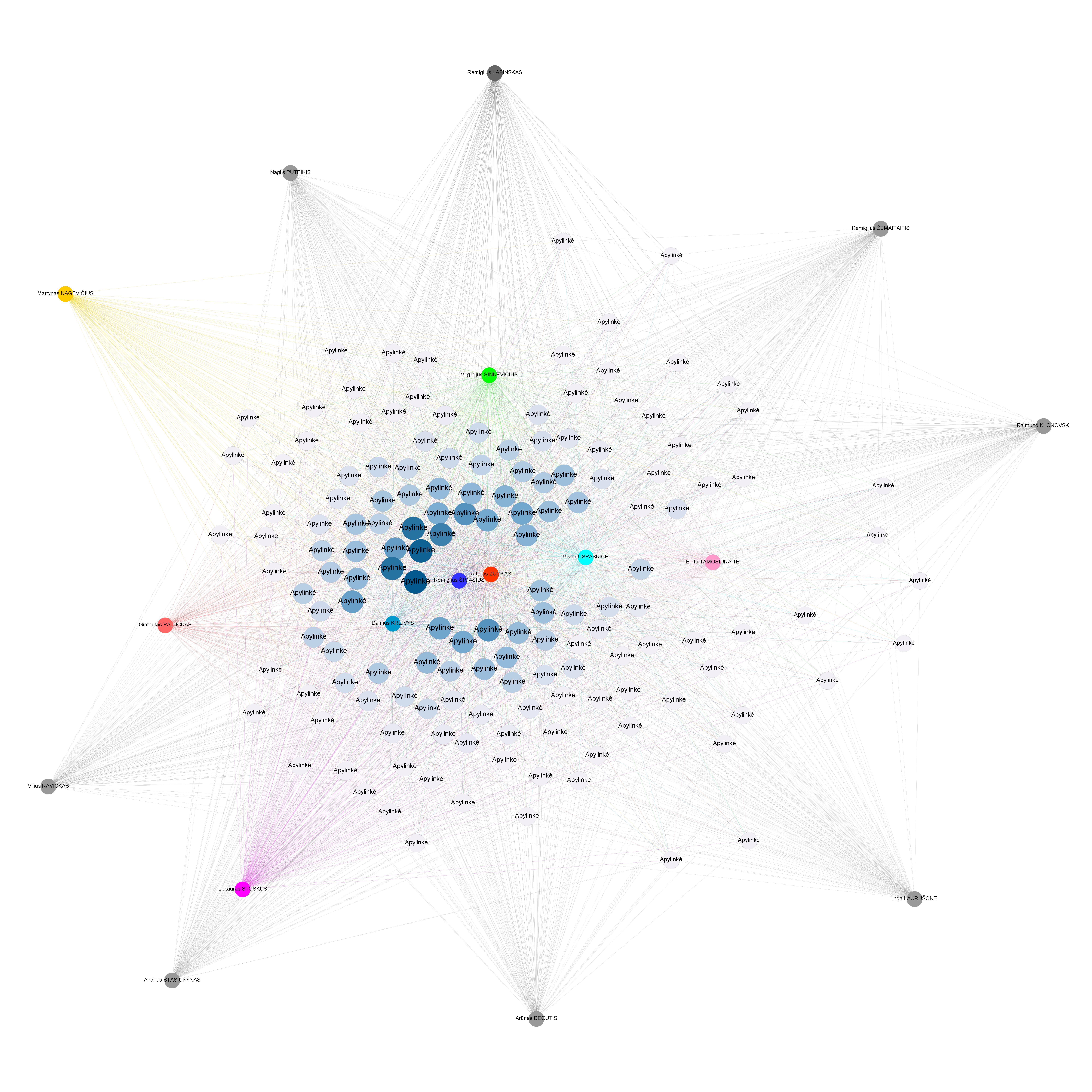 Pirmojo turo mero rinkimų tinklo diagrama.