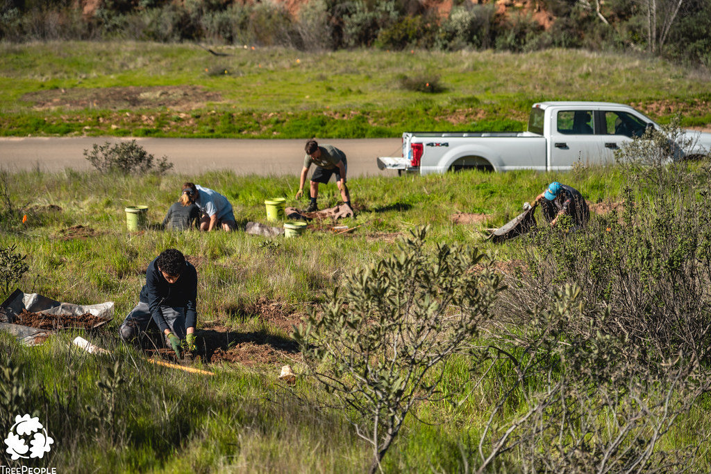 San Francisquito Canyon Planting, March 16, 2019-17