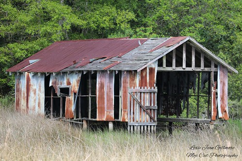 Battered Boathouse Revisited-04