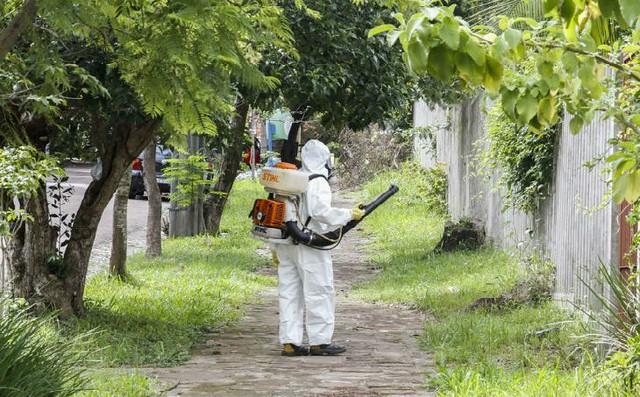 A aplicação de agrotóxico e outros produtos químicos por tempo frequente e prolongado são formas de risco. - Créditos: Foto: Arquivo Saúde Popular