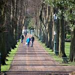 Avenham Park walkway
