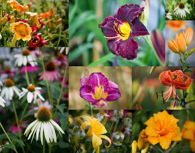 Bonnie's Flowers