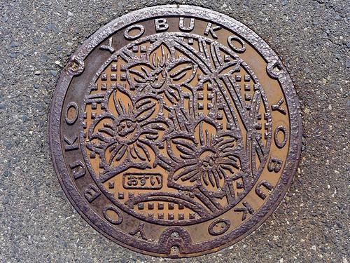 Yobuko Saga, manhole cover 2 (佐賀県呼子町のマンホール2)