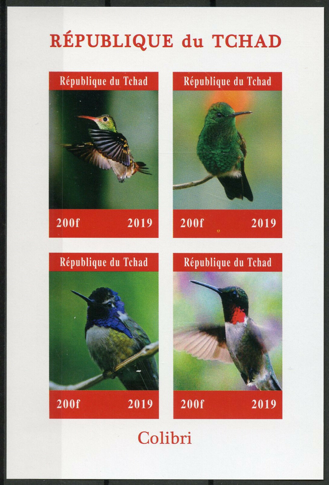 Republic of Chad - Hummingbirds (January 1, 2019) sheet of 4, imperforate