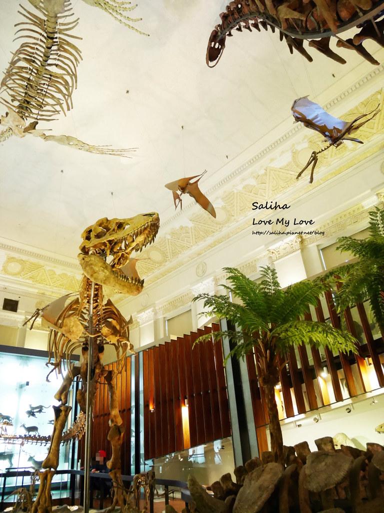 台北車站附近好玩親子景點恐龍博物館門票台博館土銀展示館 (2)