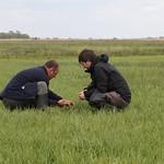 Mark+James BLTGO nest check2